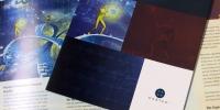 Castek corporate brochure