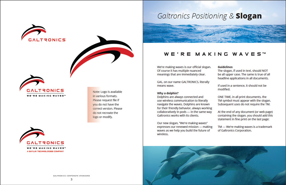 dolphin-background-persona-2